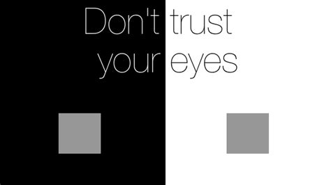 trust your eyes redshark news don t trust your eyes unless you re surrounded by grey the simultaneous colour