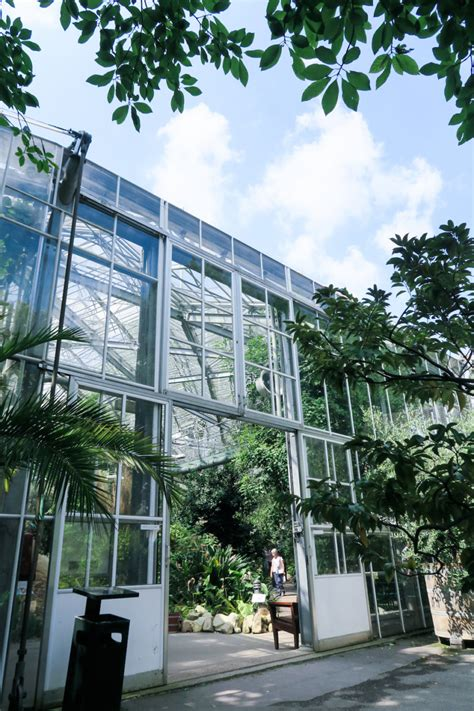 Amsterdam Botanical Garden Travelettes 187 187 Things To Do Amsterdam Botanic Gardens