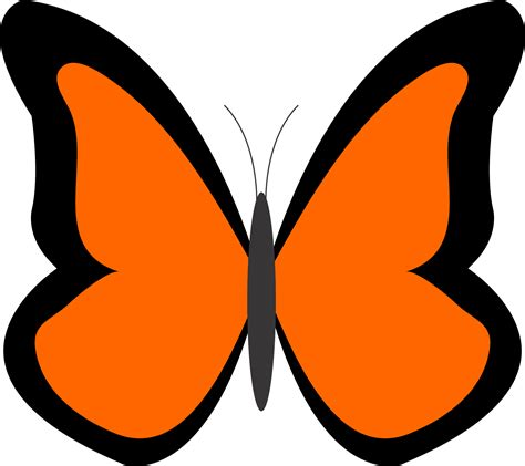 butterfly clipart best butterfly clipart 11845 clipartion