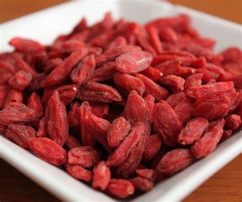manfaat goji berry untuk diet mengenal buah goji berry yang bermanfaat bibitbunga