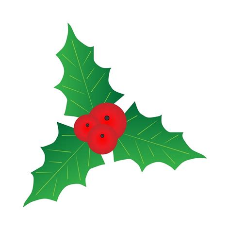 images of christmas holly leaves free illustration holly leaf leaves berry berries