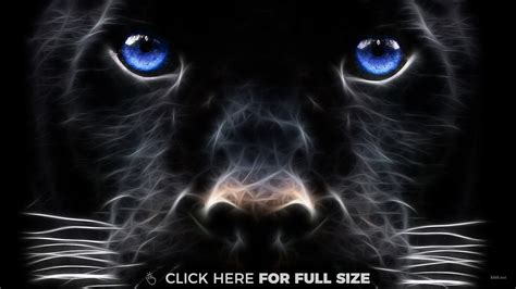 jaguar back awesome jaguar wallpaper wallpaper ideas