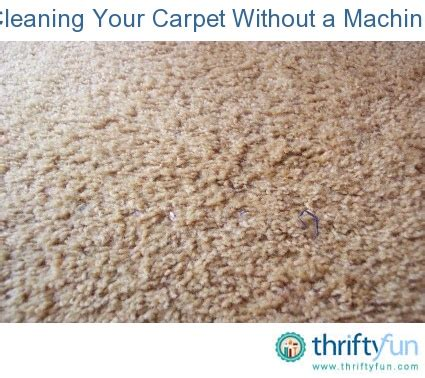 shoo rug without machine cleaning your carpet without a machine carpet cleaning machines carpets and cleaning