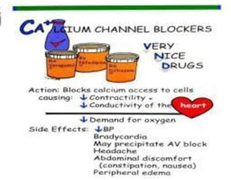 Calcium Channel Blockers Also Search For Calcium Channel Blockers Nursing