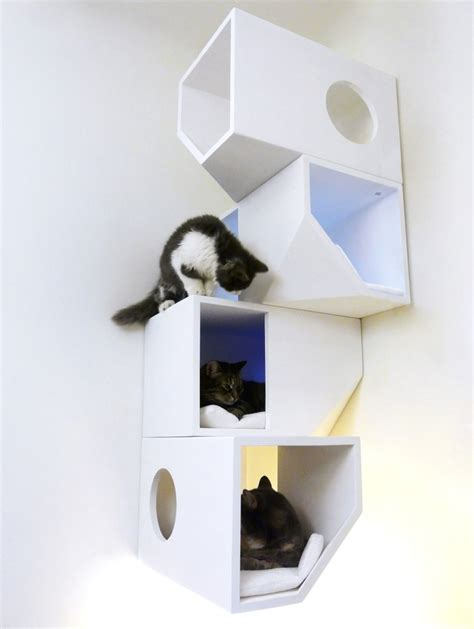 modern cat furniture design ideas wall mounted and heated catissa modern cat furniture by mojorno