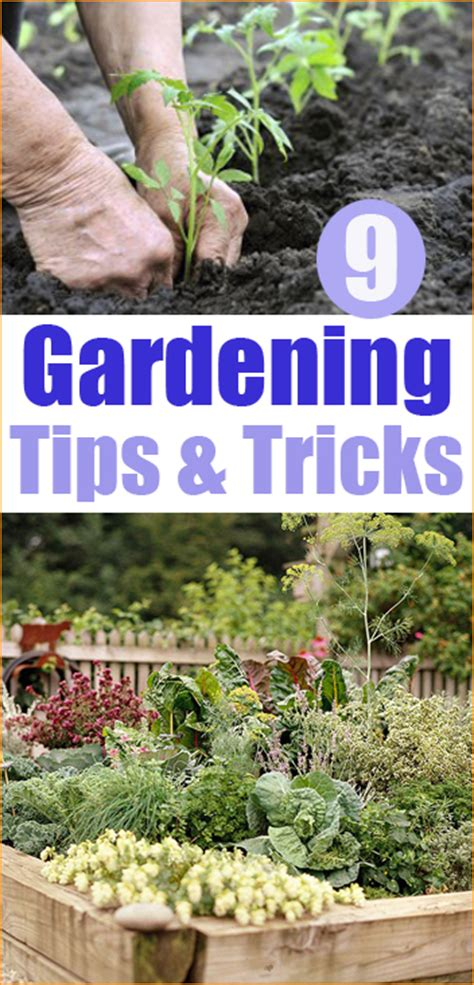 gardening  paiges party ideas