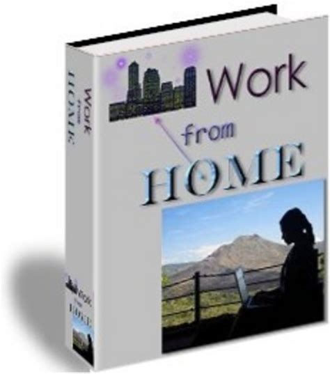 work from home plr ebook ebooks
