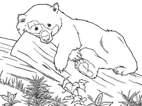 animal coloring pages panda free panda printable animal coloring pages