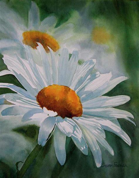 white daisies by freeman