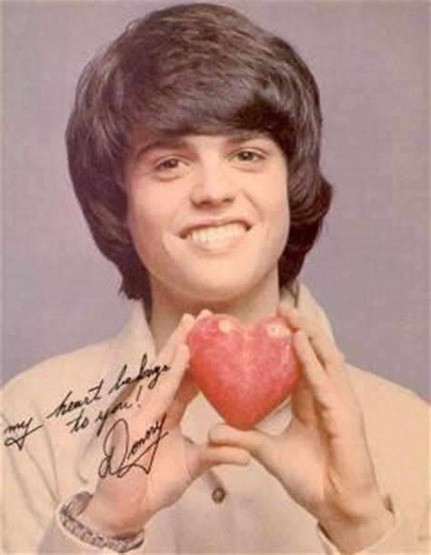 donny osmond puppy donny osmond they call it puppy https www pages cards
