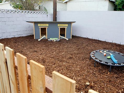 pets you can find in your backyard backyard ideas for kids and dogs ideas
