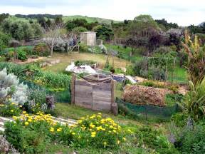 How To Design A Backyard On A Budget Sabines Place Permaculture 127