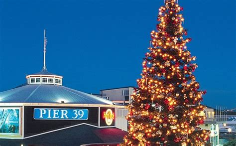 san francisco tree lighting enjoy mission rock events by train with capitol corridor
