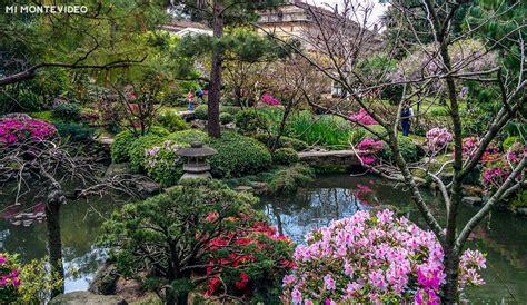 imagenes de jardines en otoño jard 237 n japon 233 s de montevideo mimontevideo com