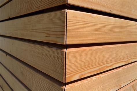 rivestimento legno pareti larice siberiano netto nodi rivestimenti in legno per