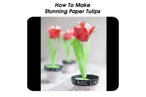 How To Make Paper Tulips - how to make stunning paper tulips