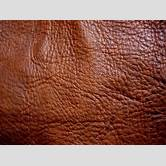 sun-leather-skin