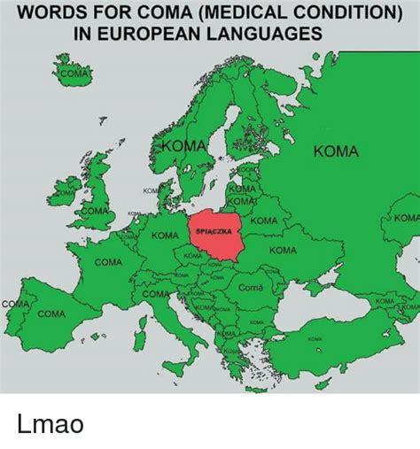 language ko words for coma condition in european languages