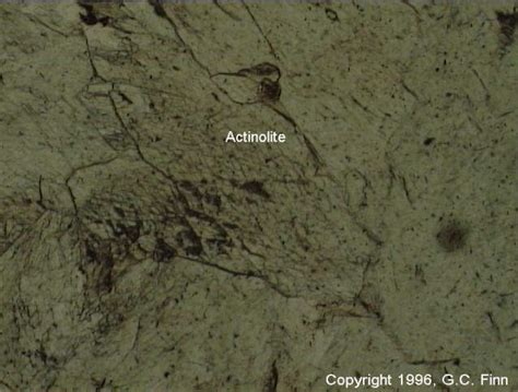actinolite in thin section mineral description