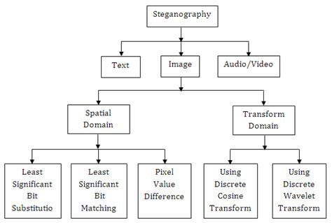 digital watermarking and steganography fundamentals and techniques books image processing fundamentals basics of matlab and