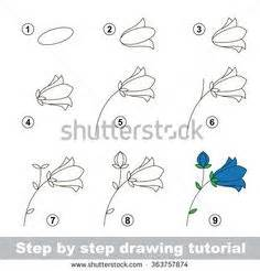 tutorial vector facebook how to draw flowers in simple steps janet whittle