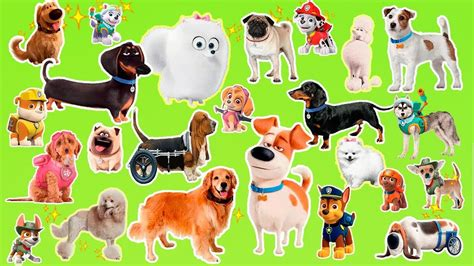 learn  cartoon dogs breeds popular cartoon dogs