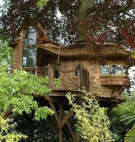 Tree Houses To Live In Tree Houses For Adults 40 Pics
