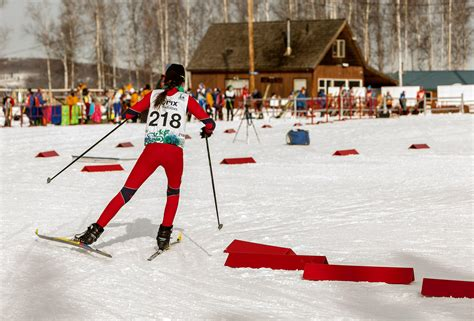 cross country ski styles cross country skiing arctic winter
