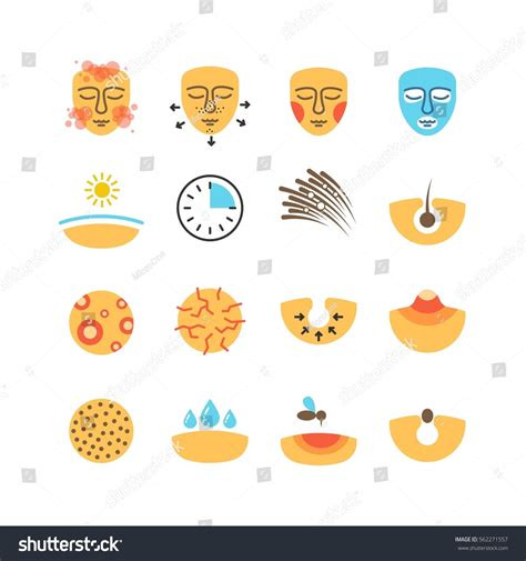 skin problems treatments washing stock vector royalty free 623665466 skin problems acne treatment skin stock vector 562271557