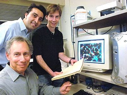 omid c farokhzad nanoparticles armed to combat cancer mit news