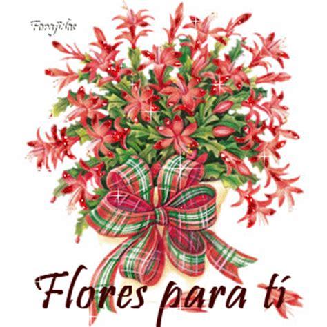 imagenes de flores invernales 161 noches invernales poesia pensamientos y reflexiones