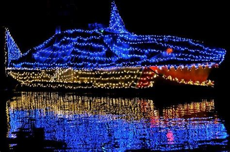 monterey parade of lights boats san pedro belize holiday lighted boat parade coast