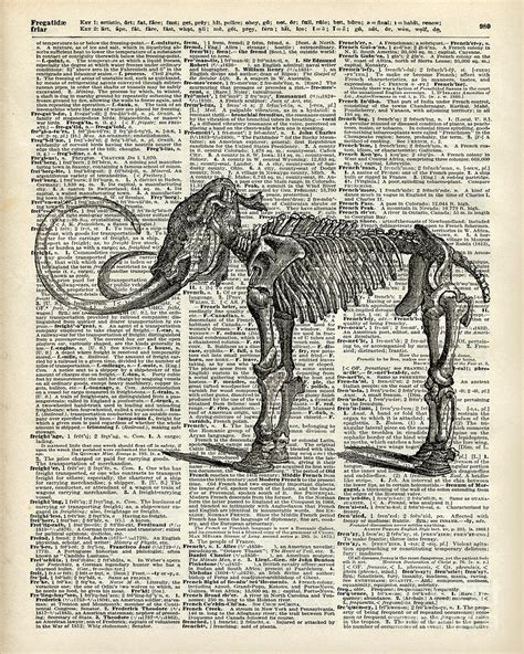 Duvet Dictionary Mammoth Elephant Bones Over A Antique Dictionary Book Page