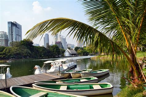 pedal boat central park lumpini park bangkok s answer to new york s central park