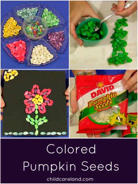 colored pumpkins colored pumpkin seeds