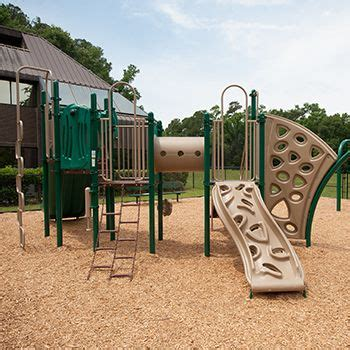 swing sets jacksonville fl 21 best images about playgrounds for schools on pinterest