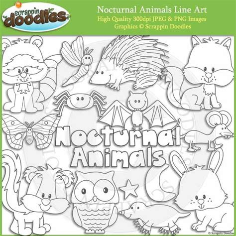 free coloring pages of nocturnal animals 26 best nocturnal animals party ideas images on pinterest
