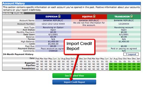 Credit Repair Business Plan Template E Credit Report