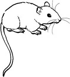 mouse colors coloring page mouse animal coloring pages 16
