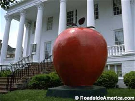 biggest virginia in the world world s largest apple winchester virginia