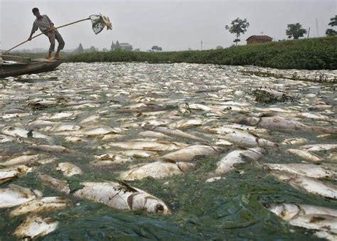 Pembuangan Air 1 5 By Selviquarium keprihatinan malaysia terhadap pencemaran alam masa kini