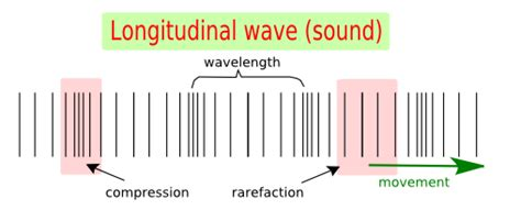 what is the difference between the transverse waves and