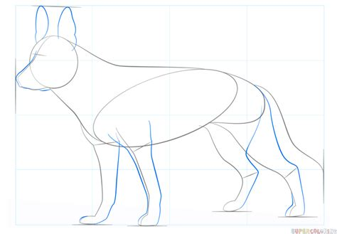 how to draw a german shepherd how to draw a german shepherd coloring