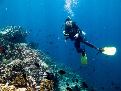 dive di bunaken for the remembrance