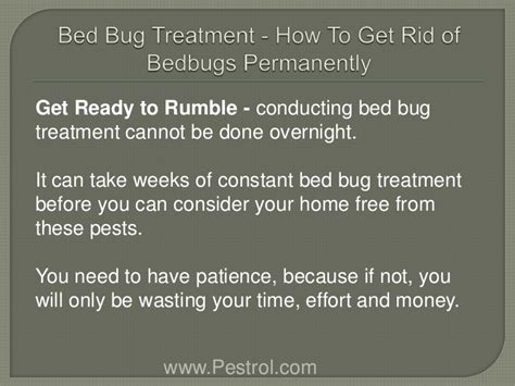 how long does it take to kill bed bugs how do you get rid of bed bugs using a library card to
