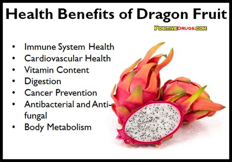Aloe Vera Facts by What Are The Health Benefits Of Dragon Fruit Benefits Of