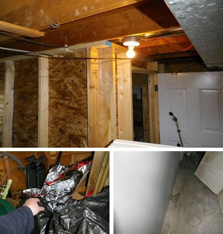 basement grow room basement storage room or grow box about the house castanet net