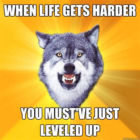 Encouraging Meme - 20 surprisingly motivational memes from the courage wolf