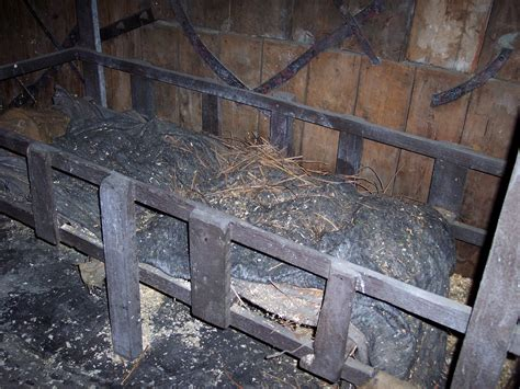 prison bed prison bed nen gallery