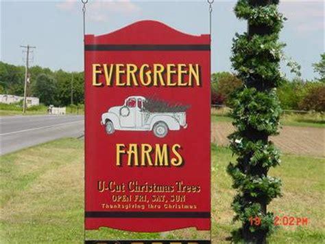delaware christmas tree growers association evergreen farms